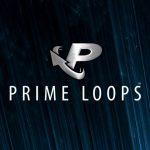 Prime-Loops